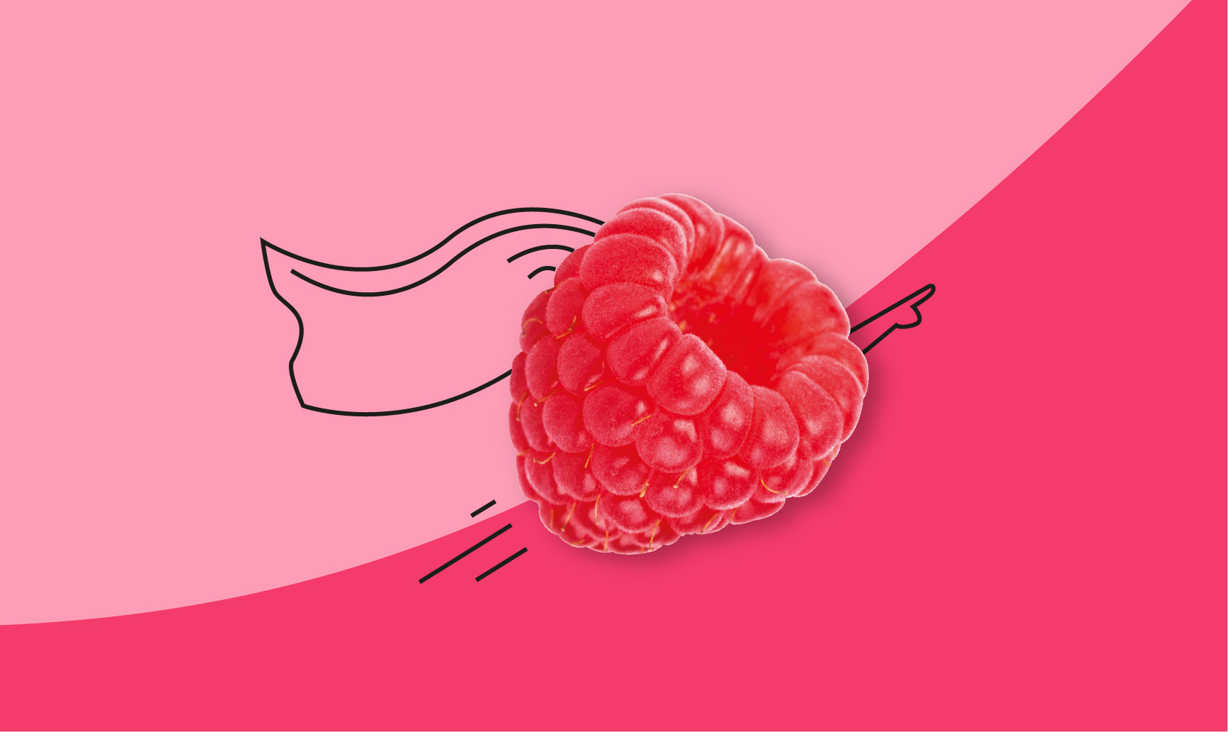 super raspberry illustration